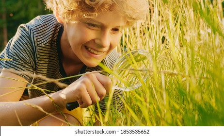 Handsome Young Naturalist Scientist Explores Plant Life and Insect Life with Magnifying Glass. Smart Curious Boy Botanist and Entomologist Explores Nature. Close-up Portrait of Child with Curly Hair