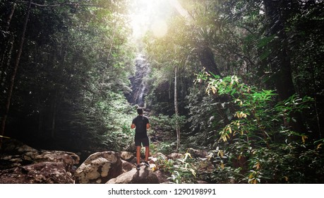 Handsome young stylish man in black t-shirt and sunglasses is engaged in trekking in the green jungle.