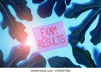 Handwriting text Exam Results. Concept meaning An outcome of a formal test that shows knowledge or ability.