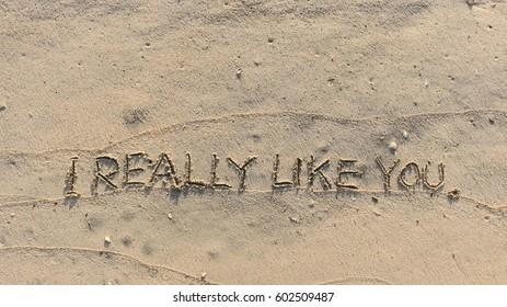"Handwriting words ""I REALLY LIKE YOU."" on sand of beach"