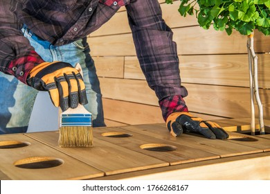 Handyman Applying Coat Of Oil Finish Onto Surface Of Outdoor Wood Furniture.