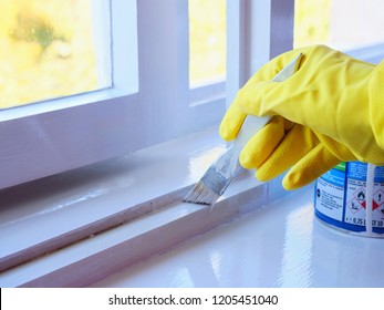 Handyman paints a window frame with white paint with a paint brush. Hand in yellow rubber gloves applies a glossy paint finish to window casement.