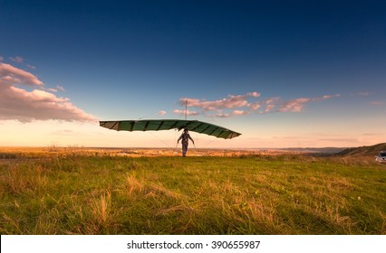 Delta Wing Images, Stock Photos & Vectors | Shutterstock