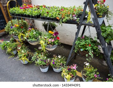 Hanging baskets for sale at an ourdoor market stall.