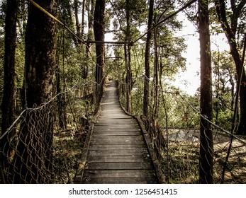 Hanging Bridge, Lolegaon