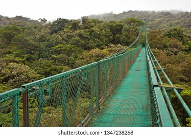 Hanging bridge in Monteverde reserve in Costarica