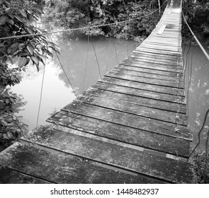Hanging bridge over river in jungle of Rio Blanco National Park in Toledo Belize in stunning black and white