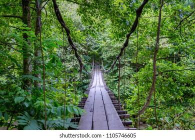 Hanging bridge over the river in Mtirala national park, Georgia