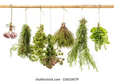 hanging bunches of fresh spicy herbs isolated on white background. rosemary, basil, thyme, oregano, marjoram, garlic. food ingredients
