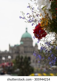 Hanging Flower Basket in Victoria, British Columbia beside Inner Harbour.  Shallow depth of field showing Legislative Buildings in background, more hanging flower baskets, decorative street lamps