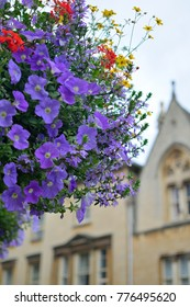 Hanging flower pot in Oxford