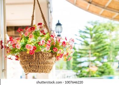 hanging flower pot - vintage filter