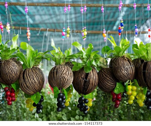 Hanging Flower Pots.
