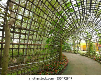 Hanging Garden Tunnel, Melon And Pergola