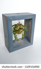 The hanging kokedama potted succulent plant in a wooden frame
