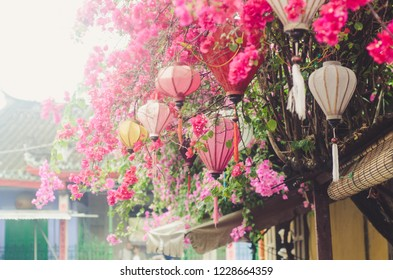 Hanging lanterns on the Bougainvillea flowers canopy