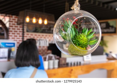 hanging mobile plant