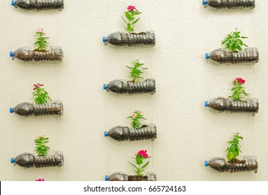 Hanging plastic bottle of flowers in the yellow wall.