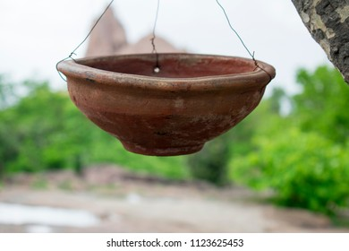 Hanging pot on tree fill with water for birds