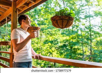 Hanging potted plant flowerpot with man drinking coffee tea mug cup on porch of log cabin cottage house with green color