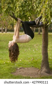 Hanging from the Tree. A young girl is hanging from a branch of a small tree. She is quite comfortable with being upside down.