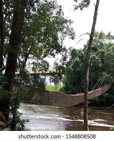 Hanging vine bridge on river