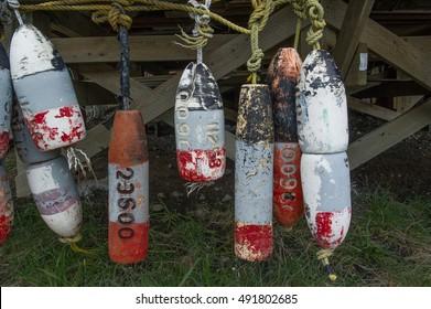 hanging vintage lobster buoys