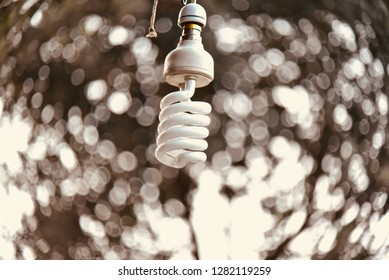A hanging white electric lights isolated object photo