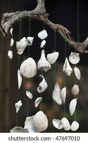 Hanging wind chime made from fishing line and shells