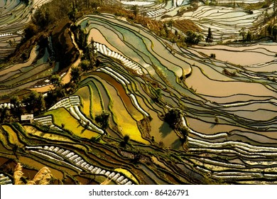 Hani rice terraces of yuanyang, yunnan, china