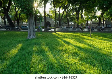 Hanoi city park with green grass and brilliant sunlight