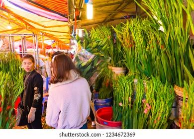 HANOI, VIETNAM - FEBRUARY 14: Unidentified flower vendor at the Quang Ba flower market on February 14, 2018 in Hanoi, Vietnam in Asia