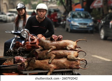 Hanoi, Vietnam - Mar 15, 2015: Selling and buying dog meat in Vietnam. Dog meat is one of the most interesting kinds of food and very popular in the country. Some other countries eat dog.