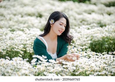 Hanoi, Vietnam, October 28 2020: Beautiful Vietnamese girl with traditional dress (ao dai) is picking and harvesting Flower in white daisy flower garden in Hanoi