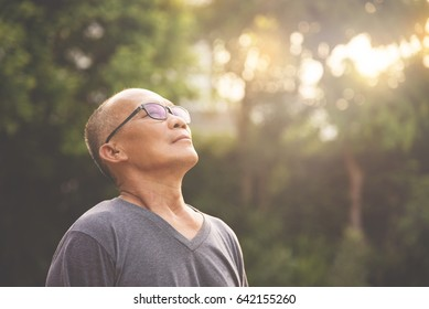 Happiness Asian senior man relaxing and breathing fresh air at park with sunlight. copy space. Plants Natural background.