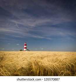 Happisburgh Lighthouse in a sea of corn