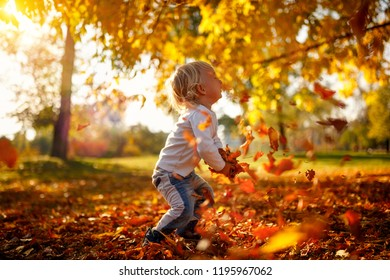 Happy adorable child boy with leaves in autumn park. The concept of childhood, family and kid