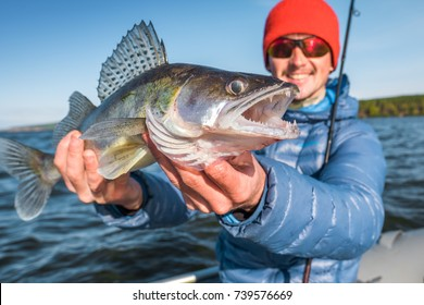 Happy angler holds fish Zander (Sander lucioperca) sitting in a boat with river on the background