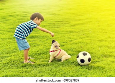 Happy Asian boy playing with his dog in garden