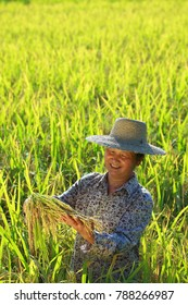 happy asian female farmer holding golden rice smile in the rice paddy