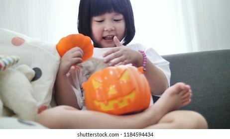 Happy Asian girl playing hide and seek with little kitten inside pumpkin bucket, Happy Halloween