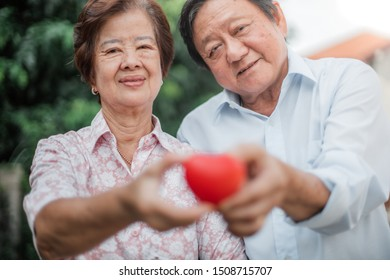 Happy Asian senior couple in love. Senior couple with heart in front of lovely Background