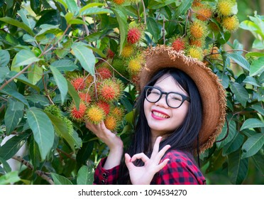 Happy Asian woman wearing red plaid shirt with hat and Rambutan fruit in the garden,Ripe and green Rambutan growing in garden/colorful red fruit at tree/fruit trade products/gardening of Rambutan,
