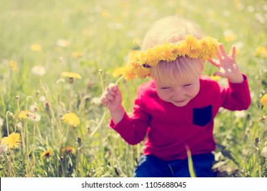 Happy baby boy on grass fieald with dandelions at sunny summer evening. Smiling child outdoors