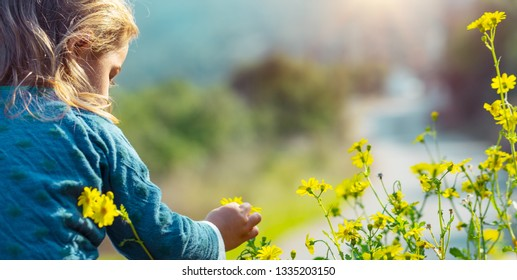 Happy baby discovering the world, having fun outdoors, sweet child enjoying fresh little yellow wildflowers, with pleasure spending spring holidays in countryside