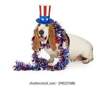 A Happy Basset Hound dog wearing a red, white and blue American themed hat and boa