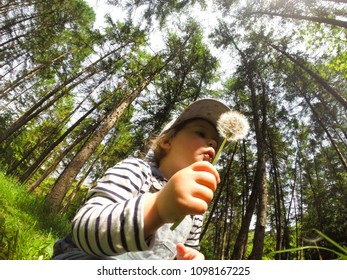Happy beatiful small girl blowing dandelion flower outdoors. Girl having fun in the park.