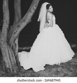 Happy beautiful brunette bride in white wedding dress with hairstyle posing in summer garden.