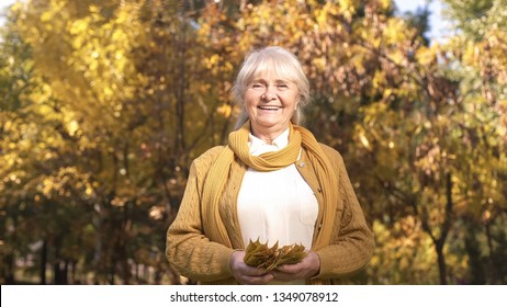 Happy beautiful senior woman strolling in autumn park and playing with leaves