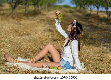 Happy Beautiful Young Woman Eating Organic Grape in the Orchard.Basket of Fruits.Picnic outdoor, Harvest, shavuot, summer vacation concept.Gold wheat field in forest, trees.copy space for text .
